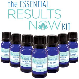 Picture of The Essential Results Now Kit